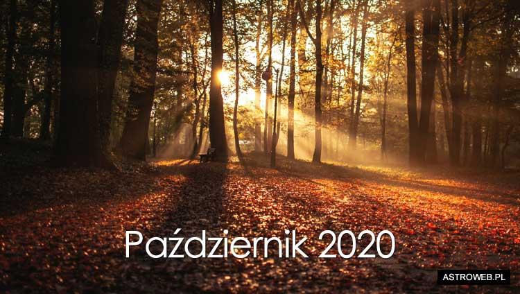 Horoskop miesięczny 2020: Październik | Horoskop miesięczny na październik  2020